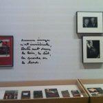 Première vitrine de l'exposition. Photo A. Reverseau