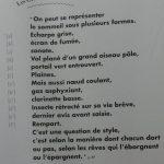 Vue de l'exposition. Photo : Émilien Sermier