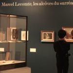 Introduction à l'exposition Lecomte. Photo A Reverseau