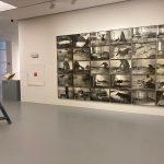 Monoculture. Jimmie Durham & Joseph Beuys (photo AReverseau)
